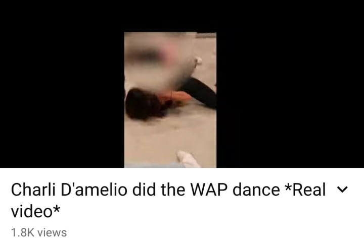 Charli D'amelio WAP dance video
